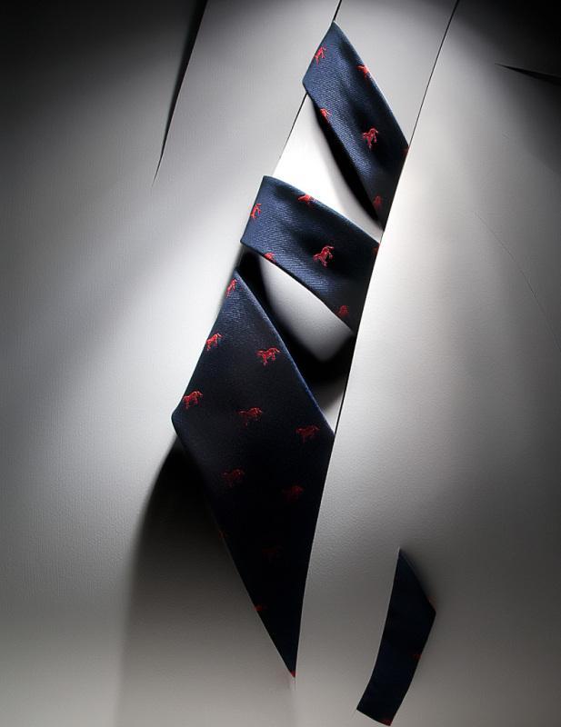 cravatta 4 new